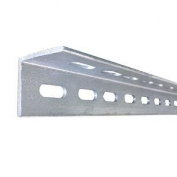 Hot Dipped Galvanized Mild Steel Angle with Holes